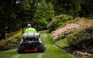 Lawning mowing a nice yard