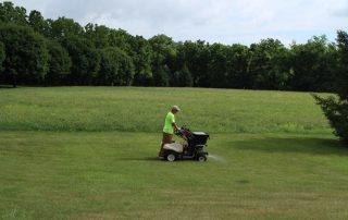 seeding yard